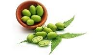 neem-bio-peluqueria-tintes-vegetales-colorantes-naturales-barcelona-sin-amoniaco-colorantevegetal-color-natural